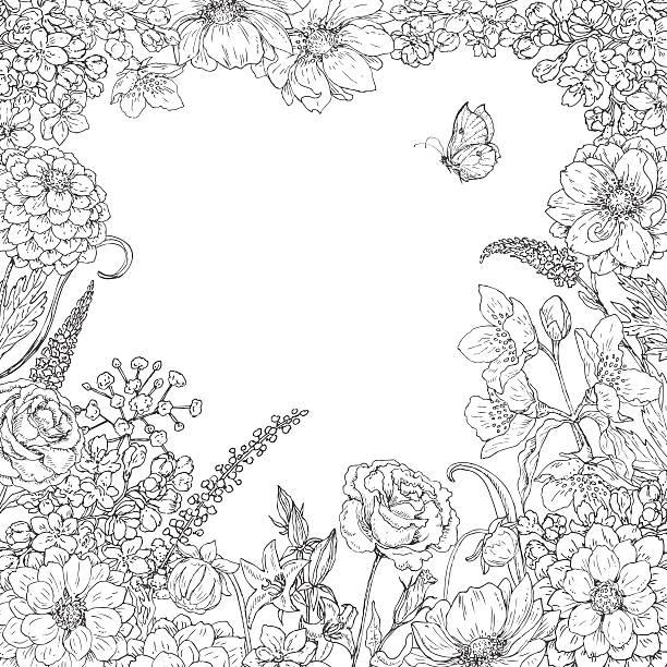 ilustraciones, imágenes clip art, dibujos animados e iconos de stock de cuadrado marco flores con flores y mariposas. - marcos de garabatos y dibujados a mano