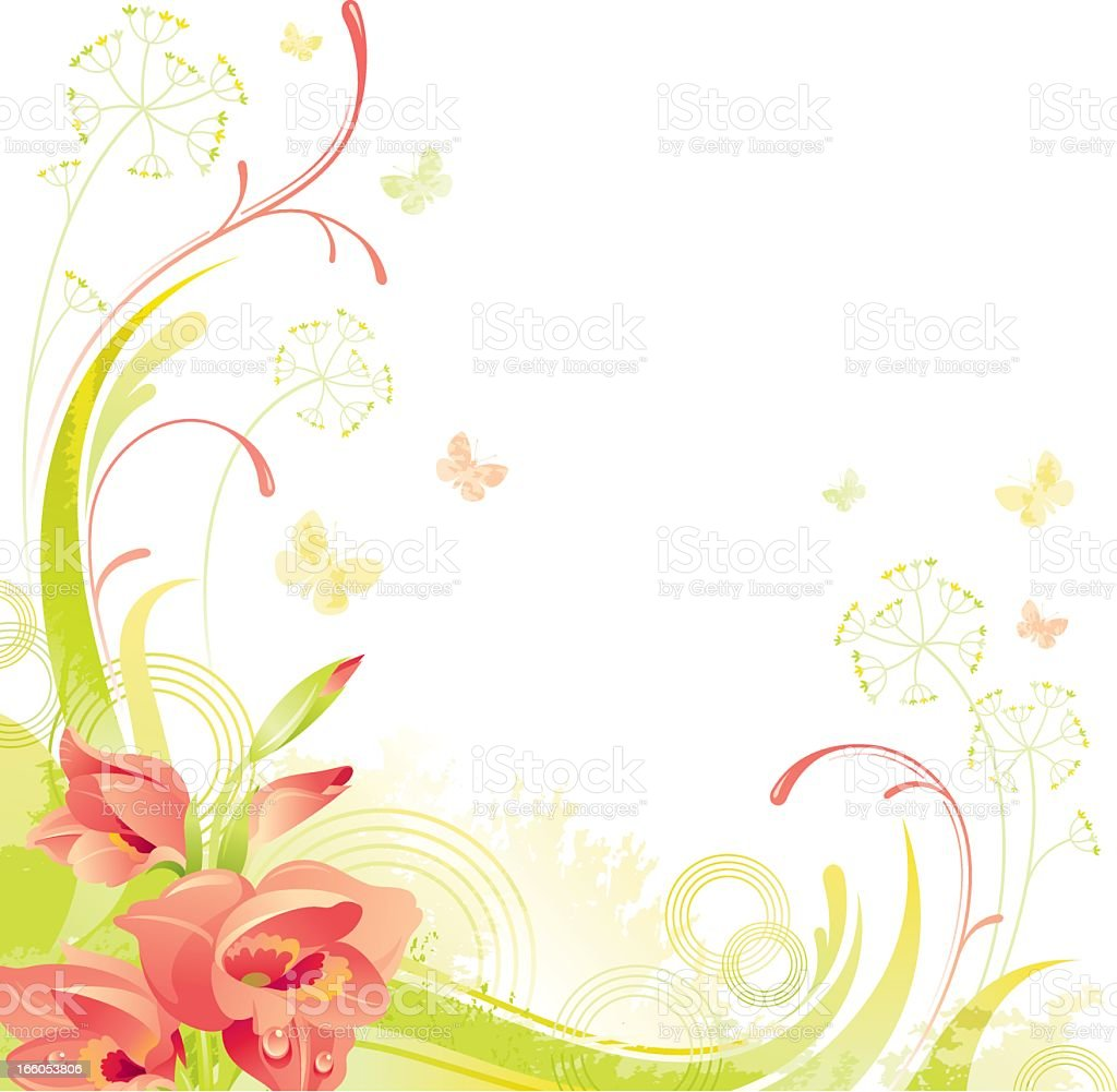 Square flower background with copyspace: red Gladiolus royalty-free stock vector art