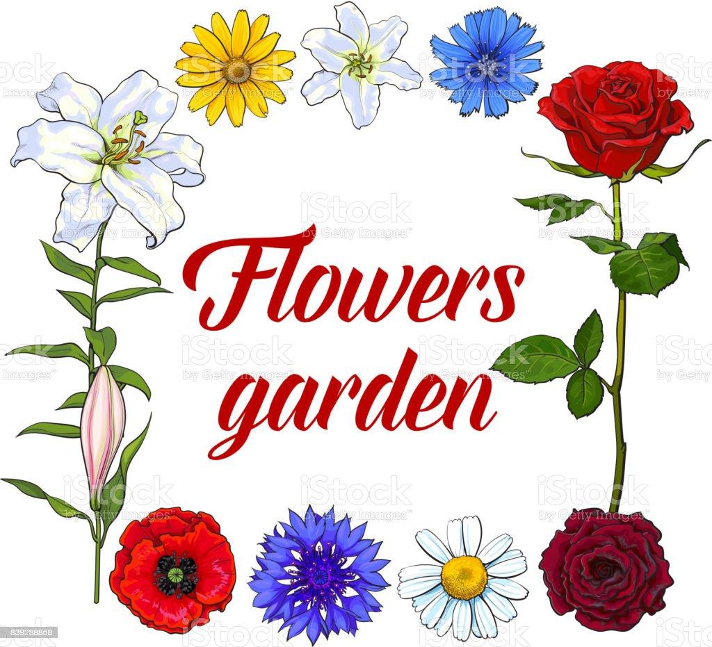 Marco Cuadrado De Flores Silvestres Jardín Con Lugar Para El Texto ...