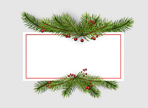 Square frame with spruce branches.