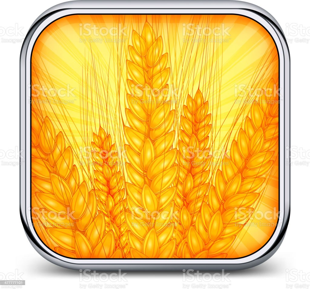 Square icon with ear wheat royalty-free square icon with ear wheat stock vector art & more images of agriculture