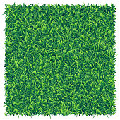 Vector realistic top view illustration of a green grass square field.