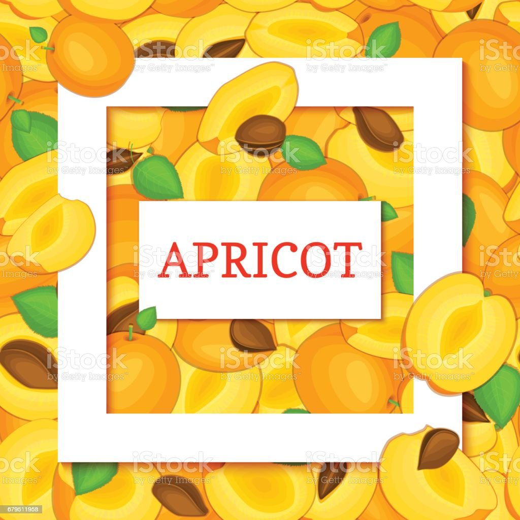 Square white frame and rectangle label on apricot fruit leaves background. Vector card illustration royalty-free square white frame and rectangle label on apricot fruit leaves background vector card illustration stock vector art & more images of christmas