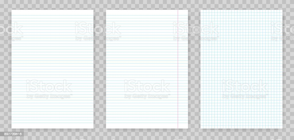 squared and lined paper sheets of notebook or copybook vector