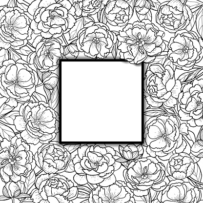 Squared Frame with Peonies