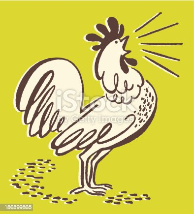 istock Squawking Rooster 186899865