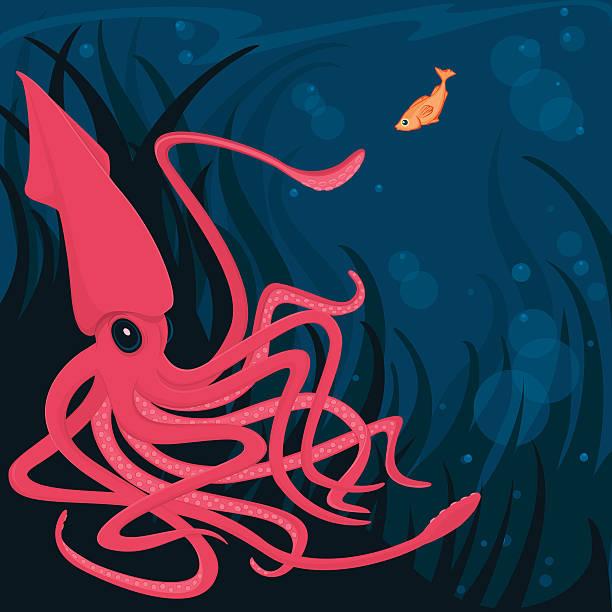 tintenfisch und neugierig fische in den tiefen ozean ein. - kalamar stock-grafiken, -clipart, -cartoons und -symbole