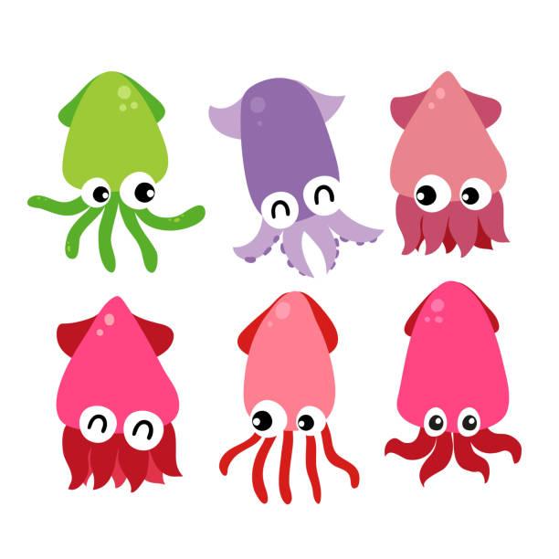 tintenfisch vektor-sammlung design - kalamar stock-grafiken, -clipart, -cartoons und -symbole