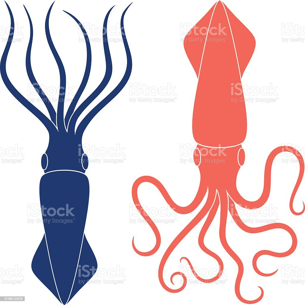 royalty free squid clip art vector images illustrations istock rh istockphoto com squid clipart black and white cute squid clipart