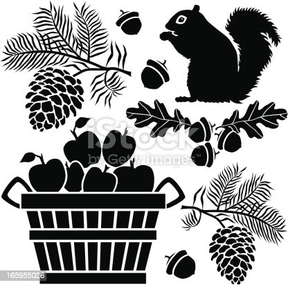 A group of vector icons with an Autumn theme featuring a squirrel, pine branches, oak leaves, acorns and a bushel of apples.