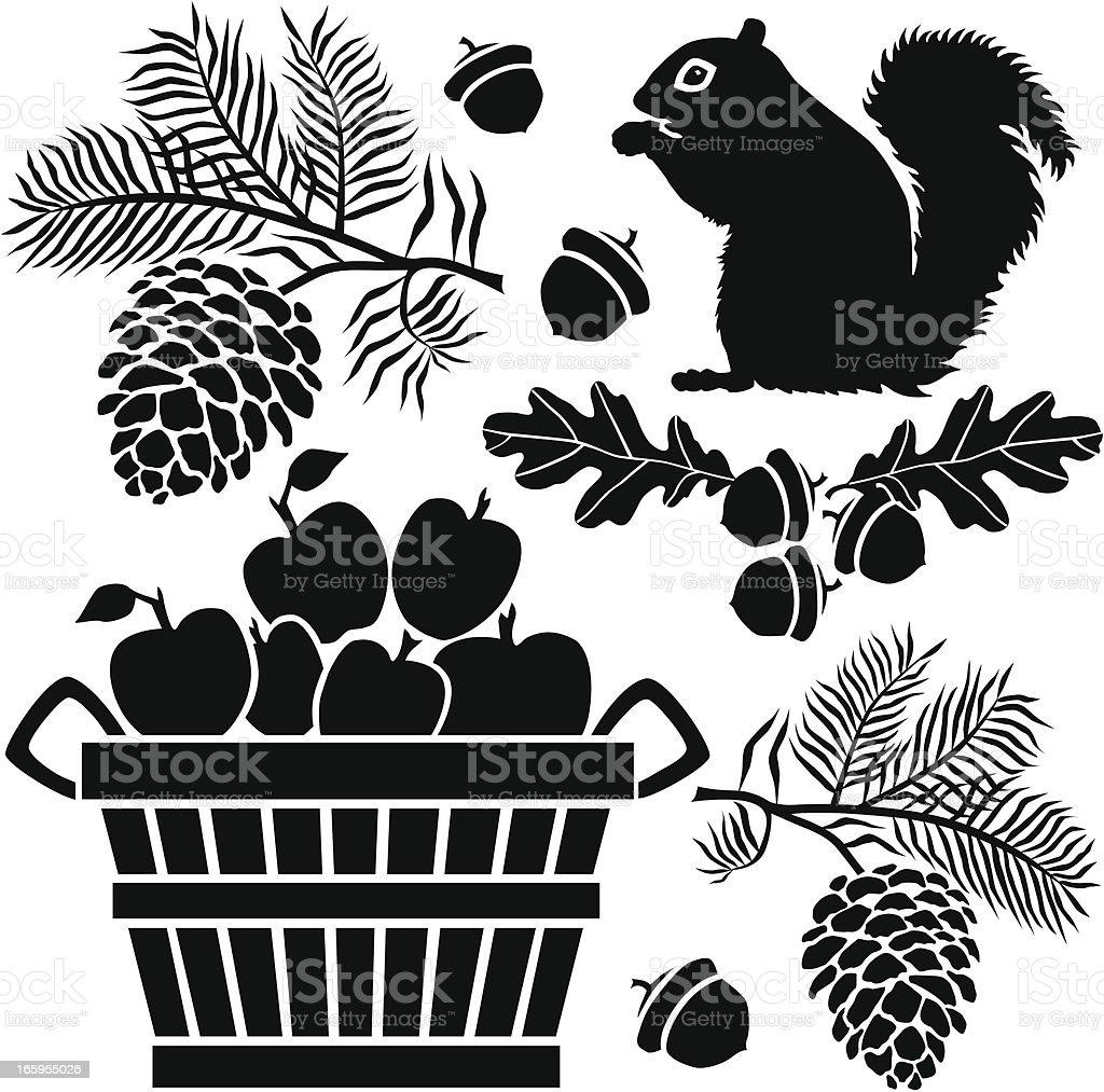 squirrel and bushel of apples vector art illustration