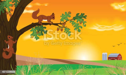 Vector illustration of Squirrel and sunset landscape.