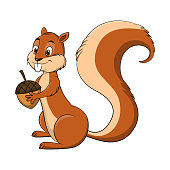 Cartoon drawing illustration of a Squirrel holding a nut