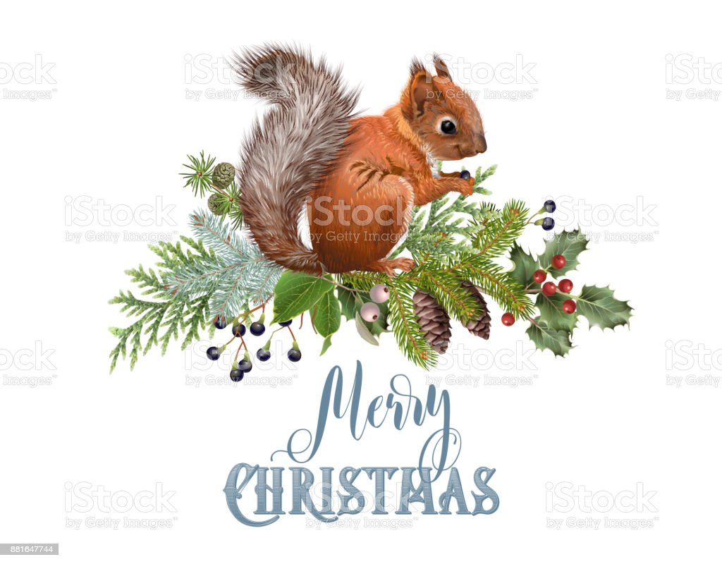 Christmas Squirrel.Squirrel Christmas Composition Stock Illustration Download Image Now