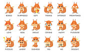 Squirrel emoji sticker set on white background. All kinds of emotios as sad, puzzled and happy.