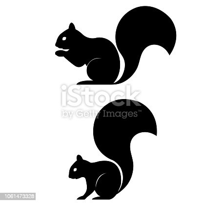 istock Squirrel icon on white background 1061473328