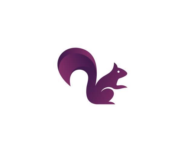illustrations, cliparts, dessins animés et icônes de icône de l'écureuil - écureui