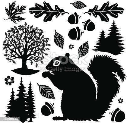 Vector design elements with a woodland theme featuring a squirrel, trees and autumn leaves.