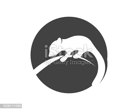 squirrel logo template stock vector art more images of animal