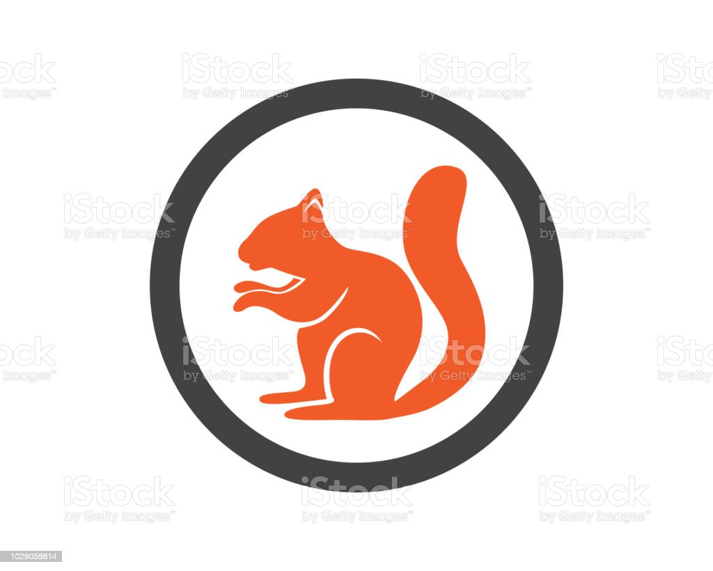 Squirrel logo template vector art illustration