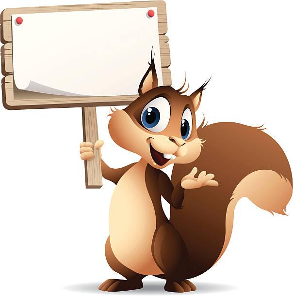 illustrations, cliparts, dessins animés et icônes de écureuil-panneau - écureui
