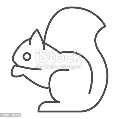 istock Squirrel thin line icon. Sitting forest animal, simple silhouette. Animals vector design concept, outline style pictogram on white background, use for web and app. Eps 10. 1207276028