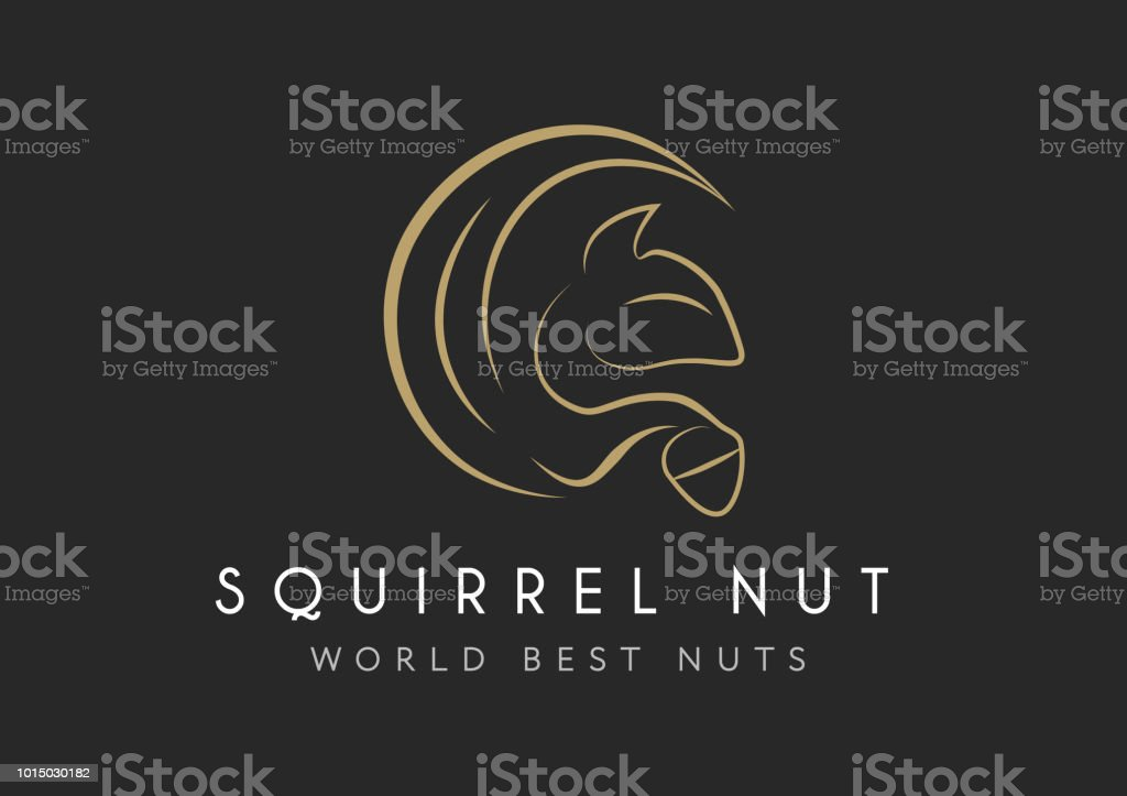 squirrel vector icon isolated on transparent background, squirrel logo concept vector art illustration