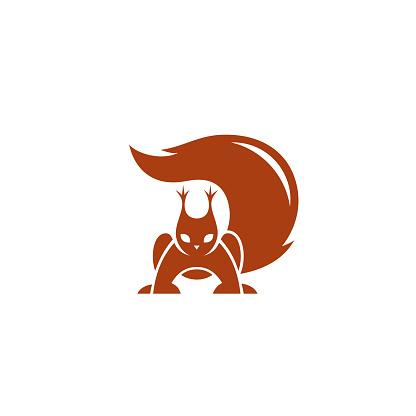 Squirrel - vector illustration