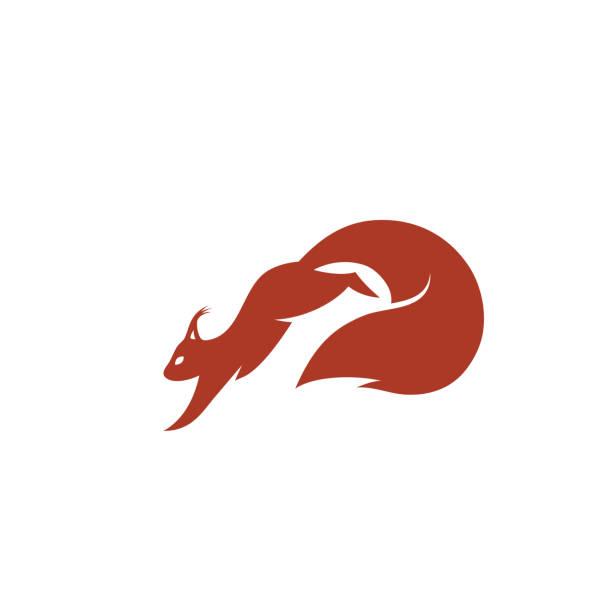 illustrations, cliparts, dessins animés et icônes de écureuil-illustration vectorielle - écureui