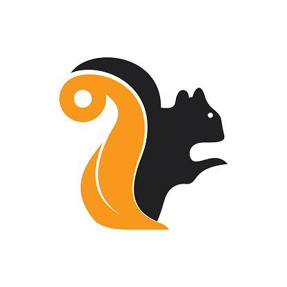 Squirrel vector logo design.