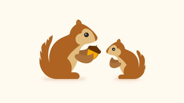 squirrel with acorn icon - baby animals stock illustrations