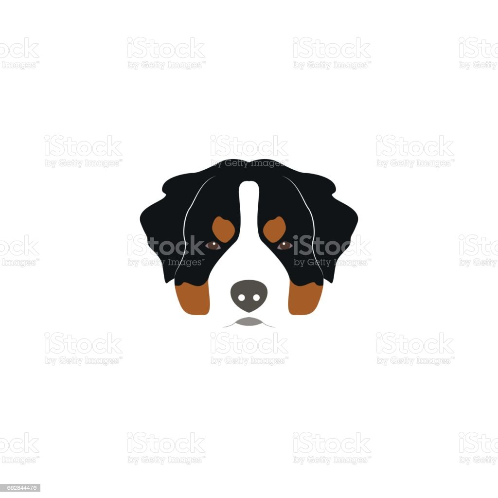 St. Bernard dog head. Vector illustration style Flat. vector art illustration