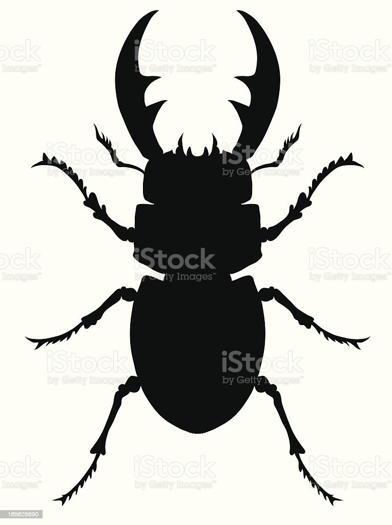 Stag Beetle royalty-free stock vector art