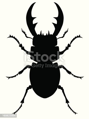 Stag beetle vector silhouette.