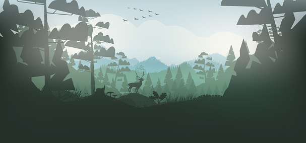 Stag in a forest, and mountains background