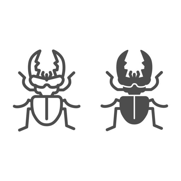 Stag-beetle line and solid icon, Insects concept, large beetle sign on white background, Deer bug icon in outline style for mobile concept and web design. Vector graphics. Stag-beetle line and solid icon, Insects concept, large beetle sign on white background, Deer bug icon in outline style for mobile concept and web design. Vector graphics arthropod stock illustrations