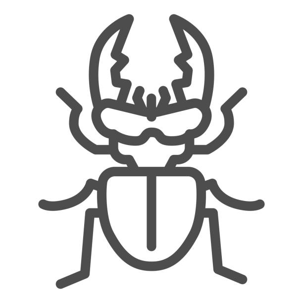 Stag-beetle line icon, Insects concept, large beetle sign on white background, Deer bug icon in outline style for mobile concept and web design. Vector graphics. Stag-beetle line icon, Insects concept, large beetle sign on white background, Deer bug icon in outline style for mobile concept and web design. Vector graphics arthropod stock illustrations