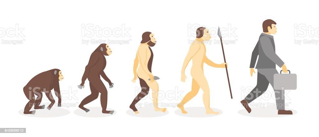 実業家に猿から人間の進化の段階。ベクトル ベクターアートイラスト