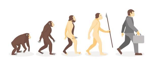 実業家に猿から人間の進化の段階。ベクトル - 猿点のイラスト素材/クリップアート素材/マンガ素材/アイコン素材