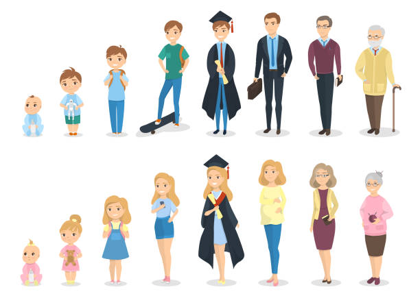 Stages of growth. Stages of growth. From baby to senior. baby human age stock illustrations