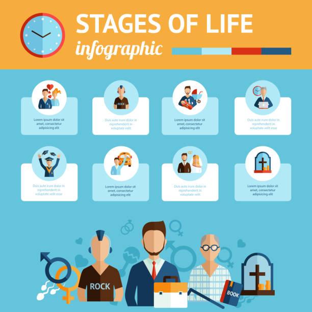 ilustrações, clipart, desenhos animados e ícones de infográficos de estágios de vida - vida de estudante