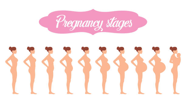 Pregnant nudist Ashley Graham
