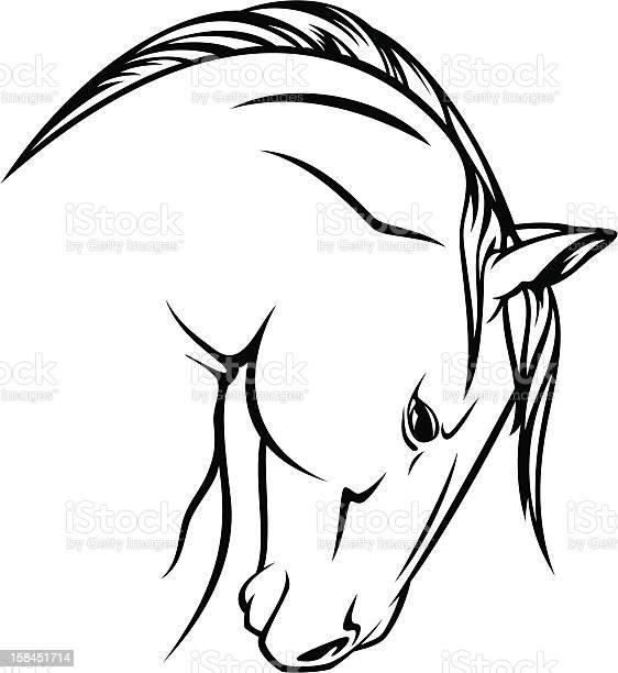 Stallion vector id158451714?b=1&k=6&m=158451714&s=612x612&h=7xi0m76yodu iceilcp7yb80ohig2edidpygr5nlto8=