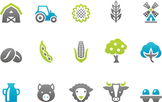 bildbanksillustrationer, clip art samt tecknat material och ikoner med stampico icons - farm - cotton growing