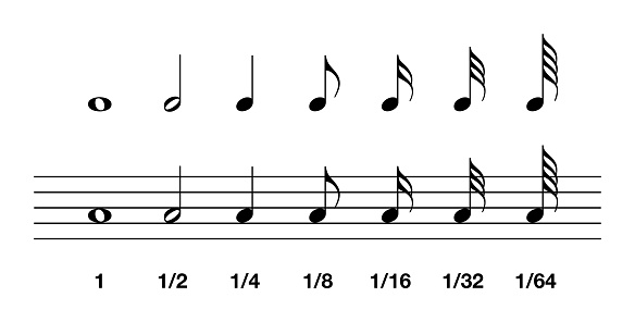 Standard note values in music notation