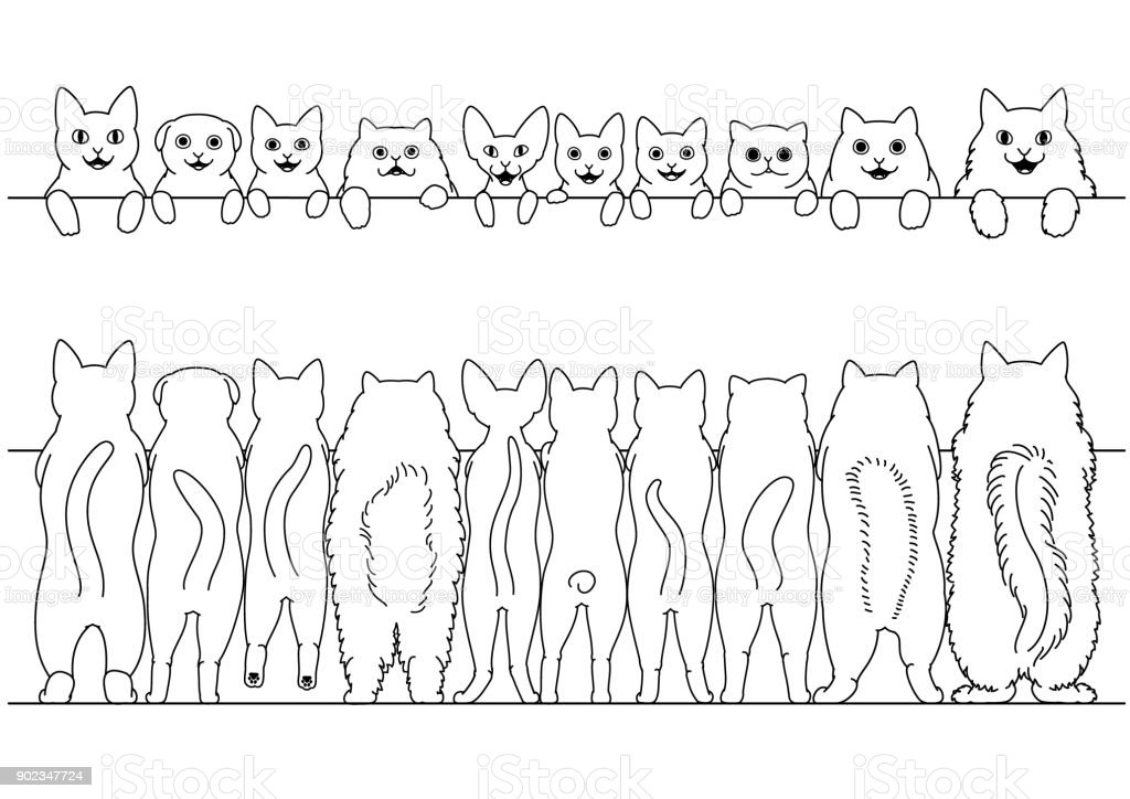 standing cats front and back border set vector art illustration