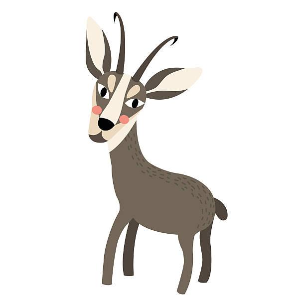 standing chamois animal cartoon character vector illustration. - bergziegen stock-grafiken, -clipart, -cartoons und -symbole