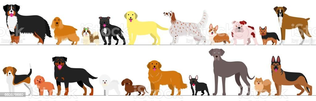 Standing Dogs Border Set Royalty Free Stock Vector Art Amp