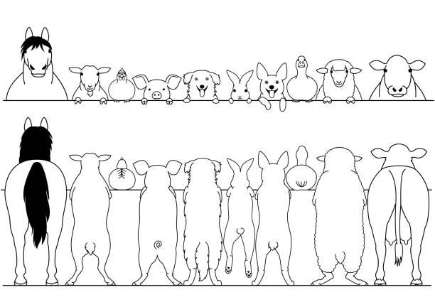 standing farm animals front and back border set vector art illustration