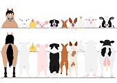 standing farm animals front and back border set.